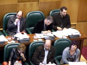 Pleno del Ayuntamiento de Zaragoza celebrado el 4 de febrero de 2009