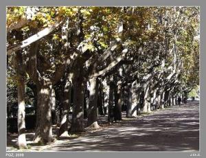 Parque Grande de Zaragoza. Foto tomada del blog parque grande