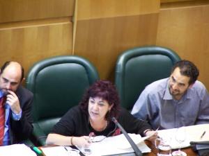 Carmen Gallego durante su intervención en el pleno